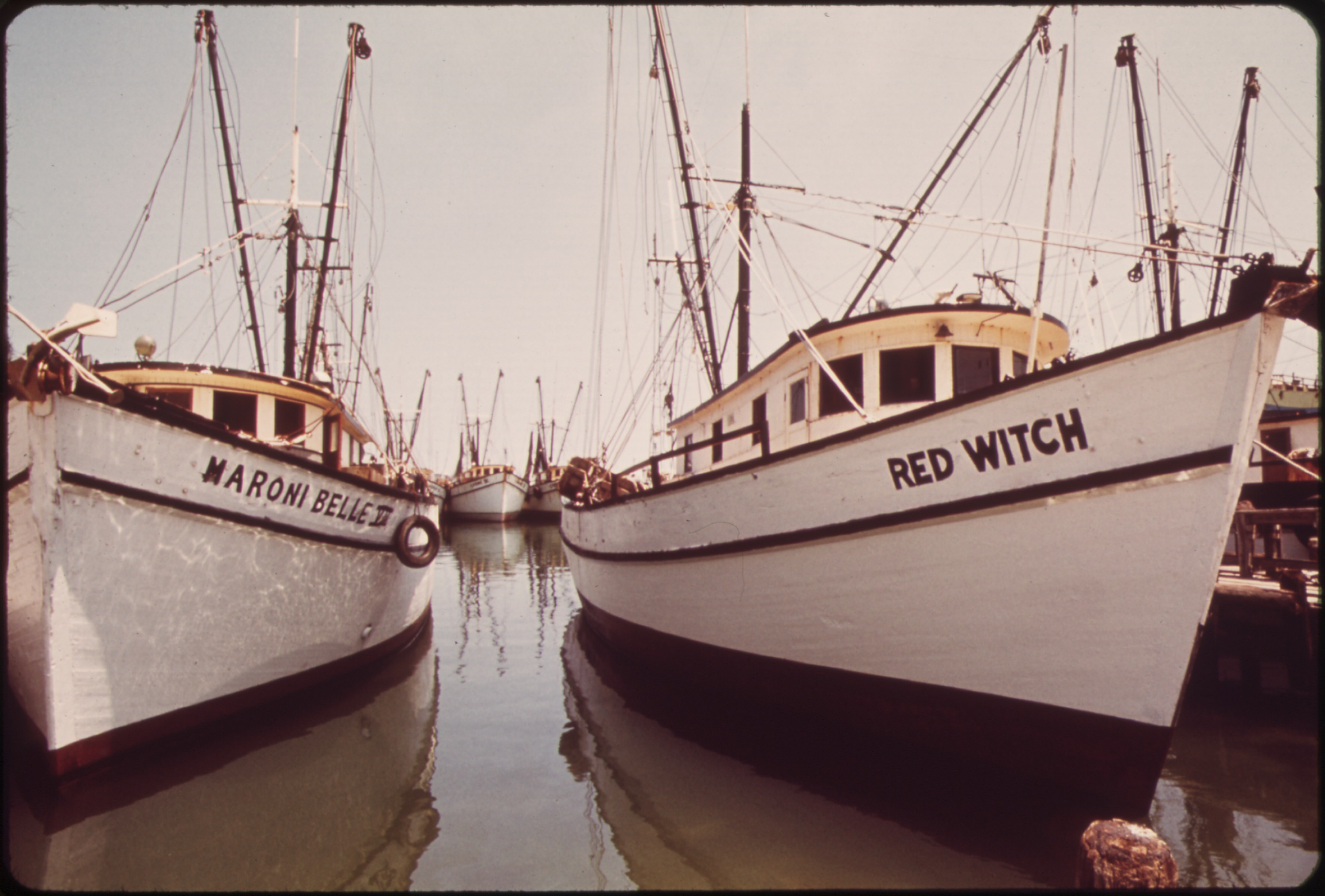 File shrimp boats lie at anchor at the commercial fishing for What is commercial fishing