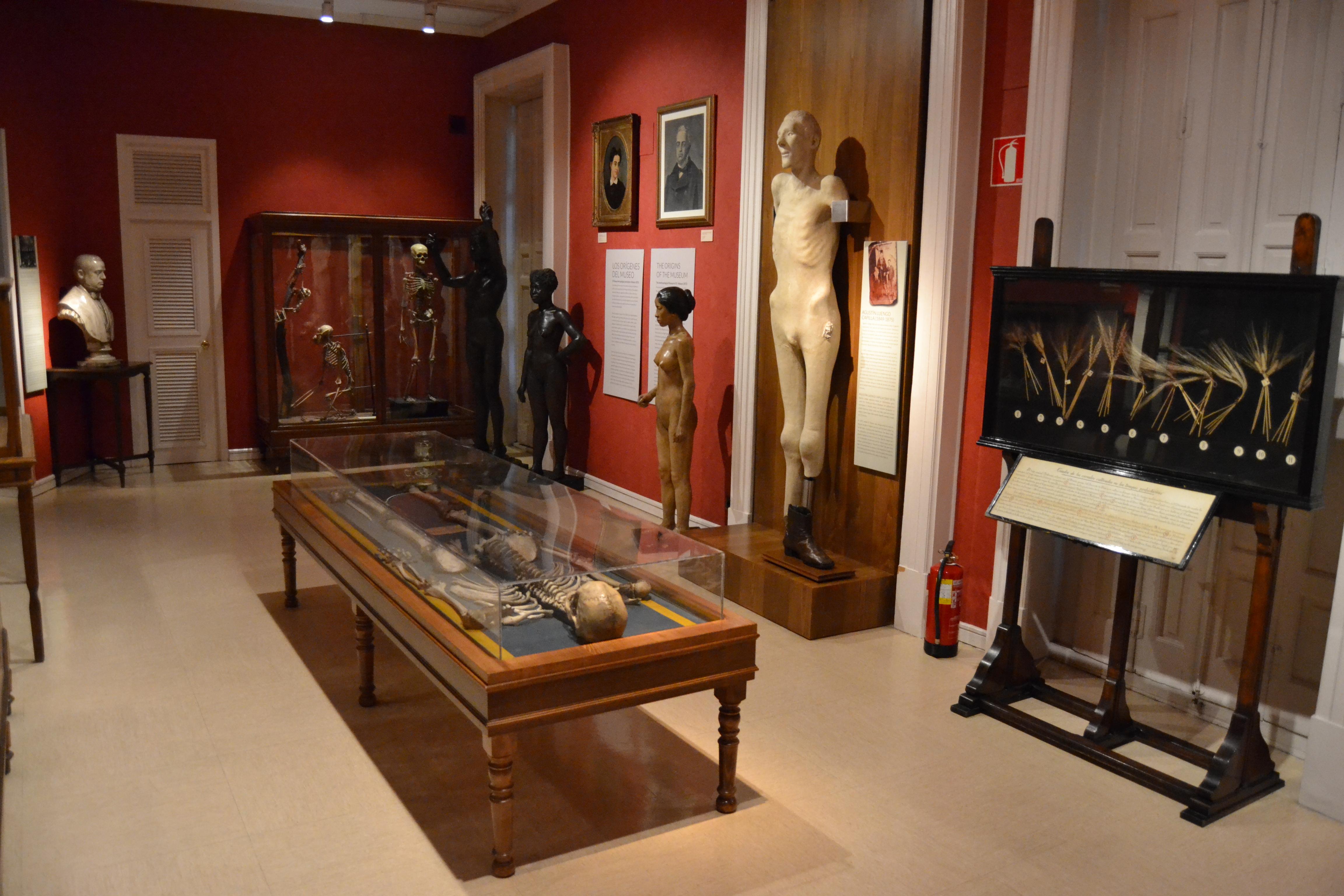 Museo Nacional de Antropología (España)