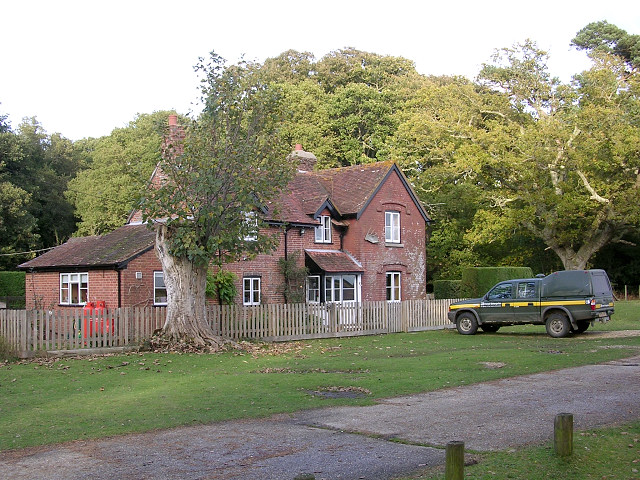 Stockley Cottage, New Forest - geograph.org.uk - 69261