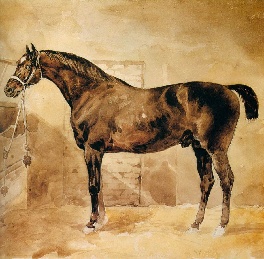 File:Théodore Géricault - English Horse in Stable ... Theodore Géricault