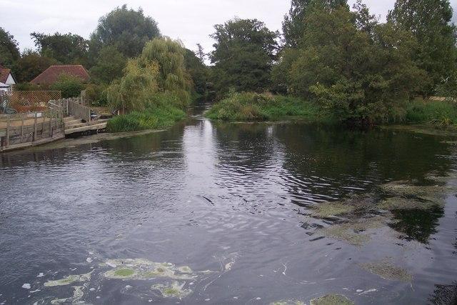 The River Stour near Chartham Corn Mill - geograph.org.uk - 1491764