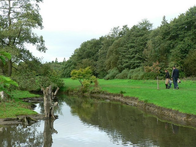 The stream, Golden Acre Park - geograph.org.uk - 259284