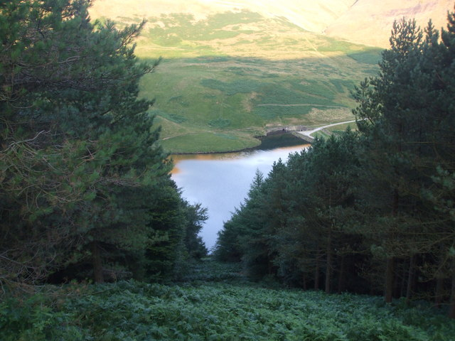 Through the trees to Yeoman Hey Reservoir - geograph.org.uk - 1434561