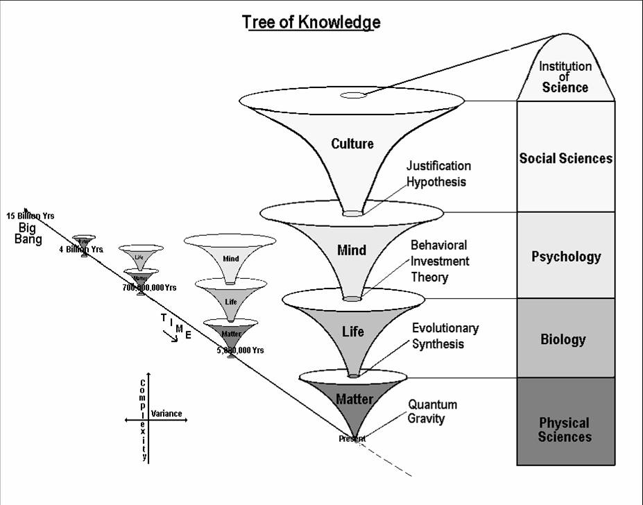 tok and psychology Theory of knowledge guide 1 introduction purpose of this document this publication is intended to guide the planning, teaching and assessment of theory of knowledge (tok.