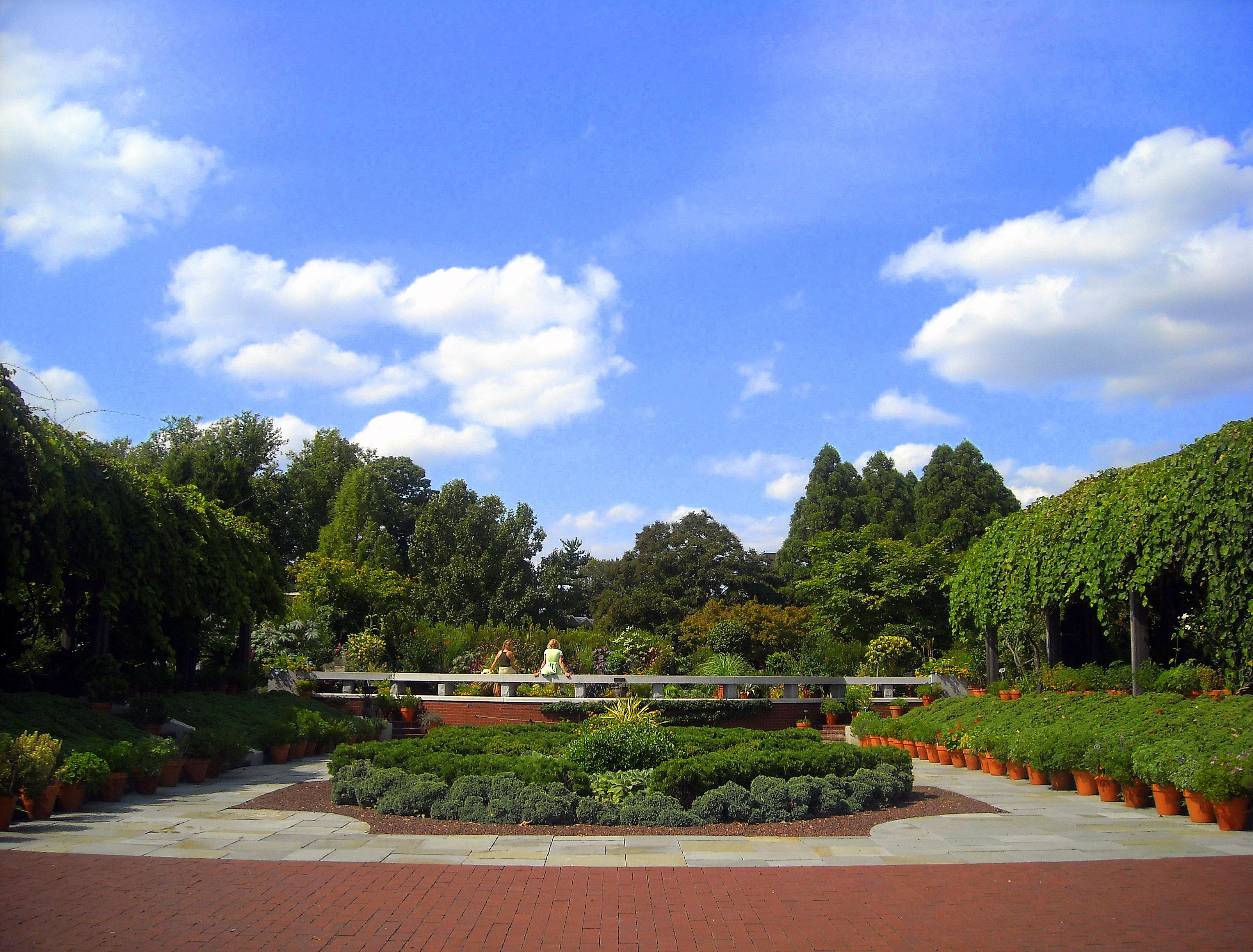 United States National Arboretum garden.jpg