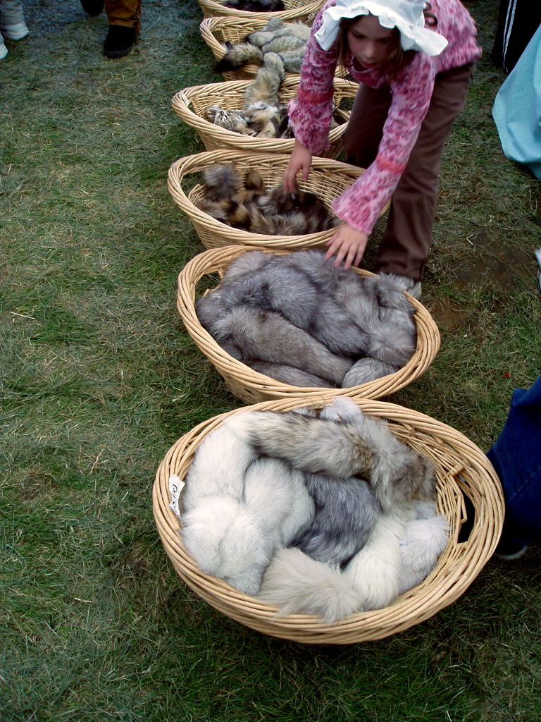file various animal tails to sale 2 feast of the hunters moon
