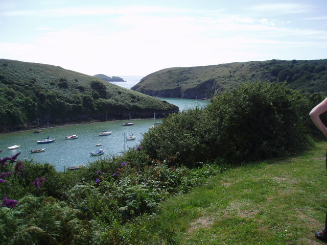 View out of Solva harbour - geograph.org.uk - 201982