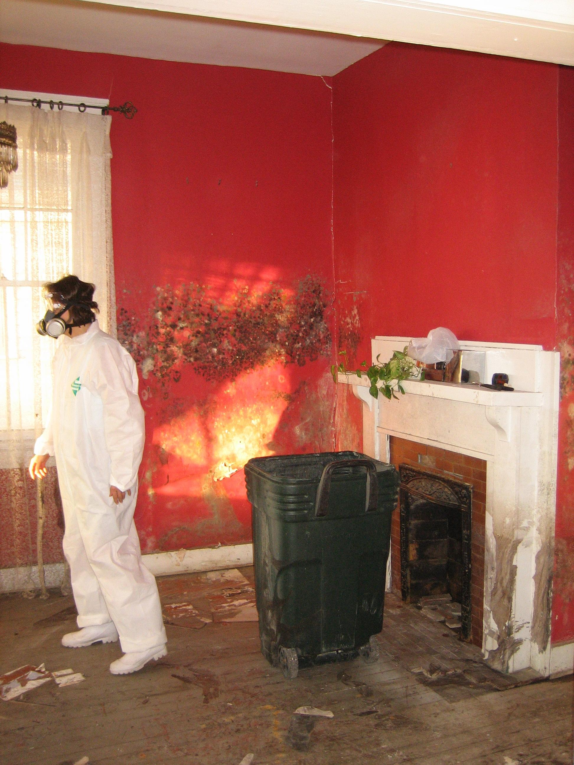 Pleśń na ścianach domu zalanego w wyniku huraganu Katrina (2005)