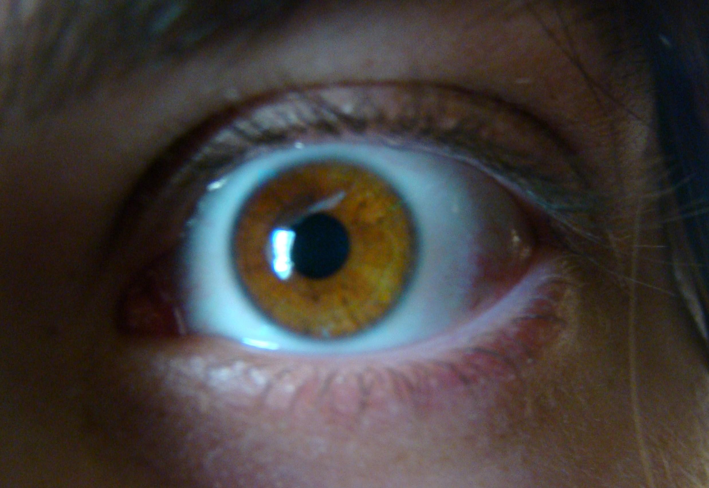 тоже спектр глаз фото смородиновой слили