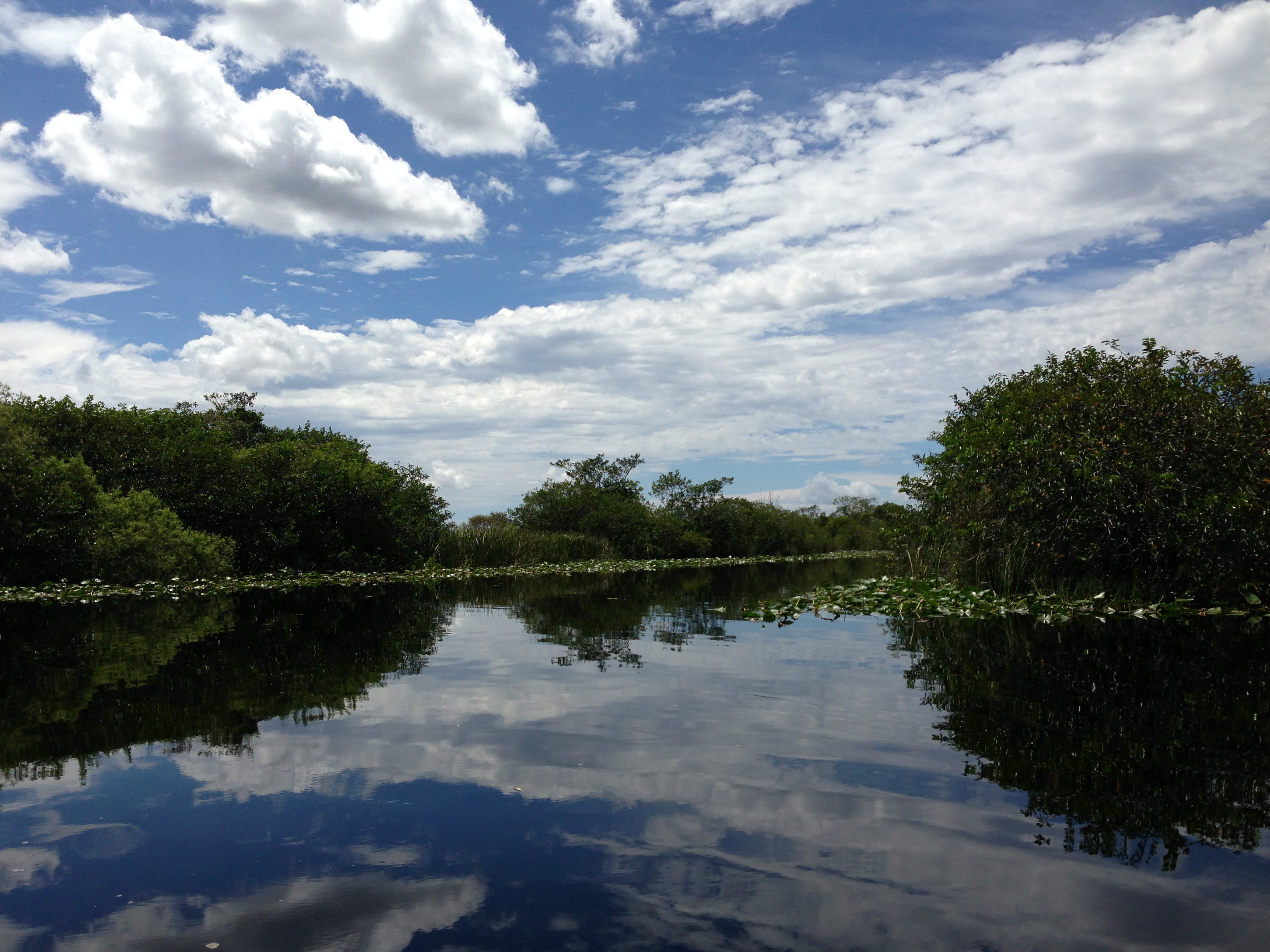 Canals near Everglades Holiday Park, Florida, USA - 20130830.jpg