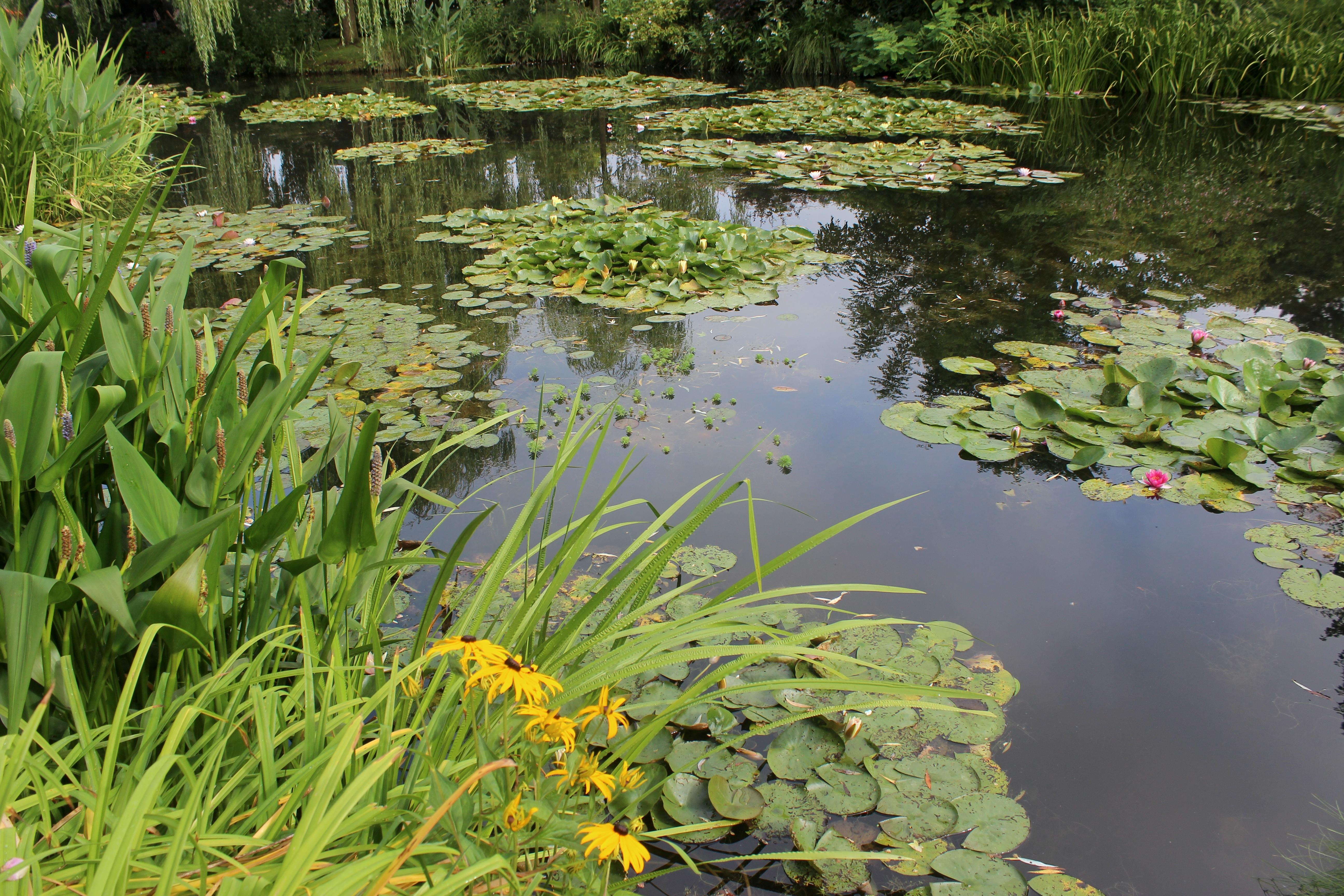 File Casa y jardn de Monet Giverny 42 JPG Wikimedia mons