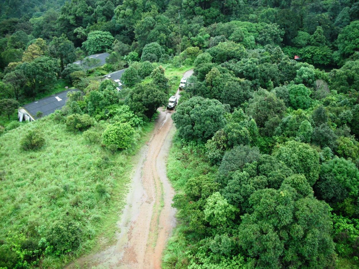 A drive through Silent Valley National Park best of the Offbeat places in Kerala