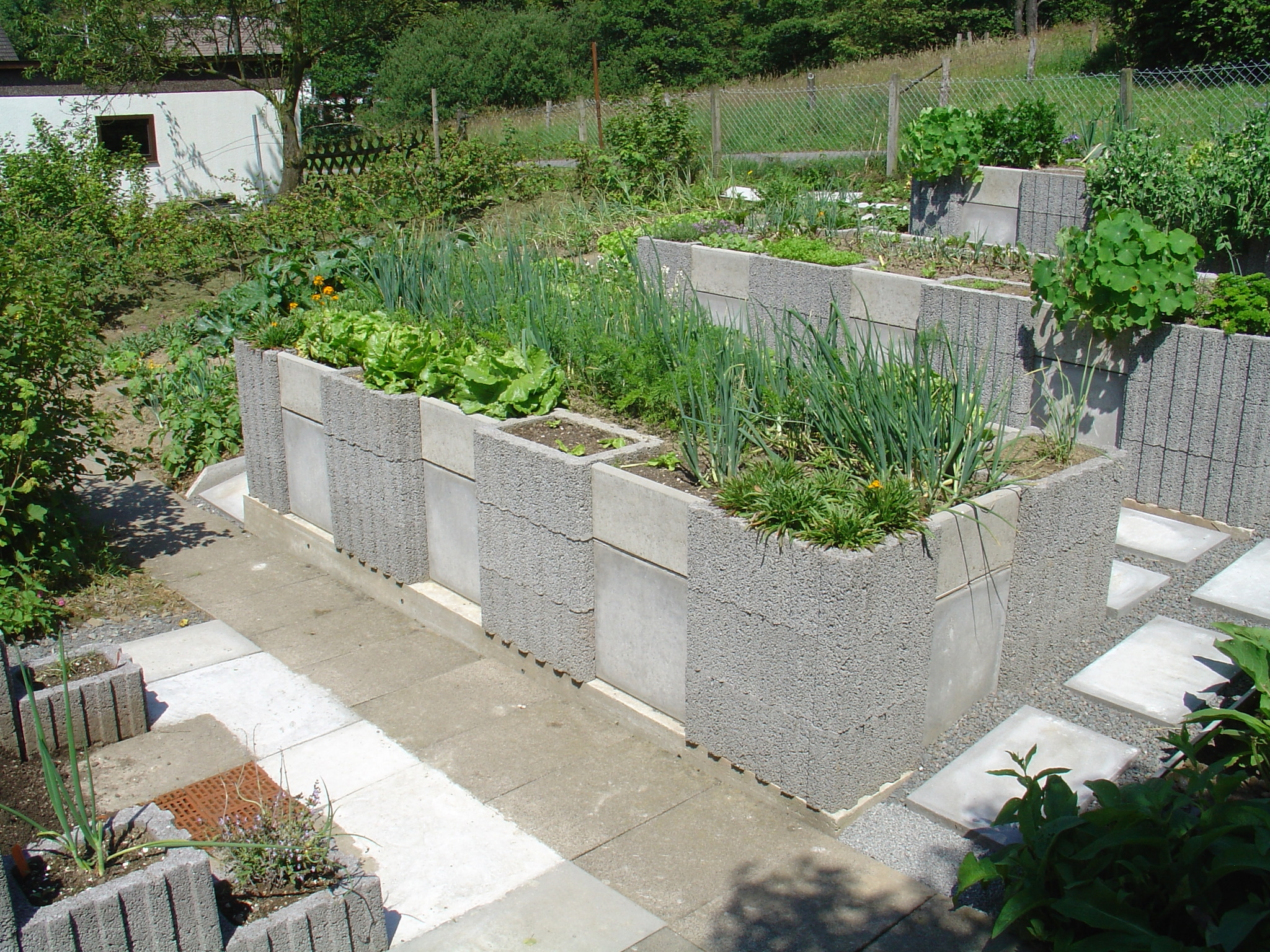 Raised-bed gardening - Wikipedia