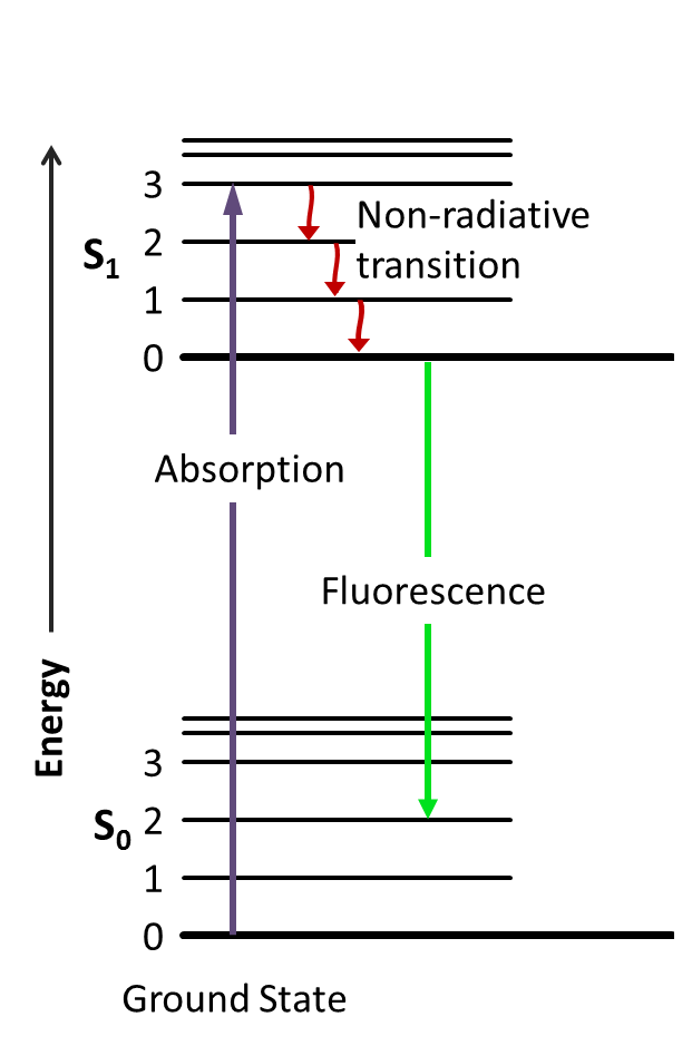 Filejablonski diagram of fluorescence onlyg wikimedia commons filejablonski diagram of fluorescence onlyg ccuart Choice Image