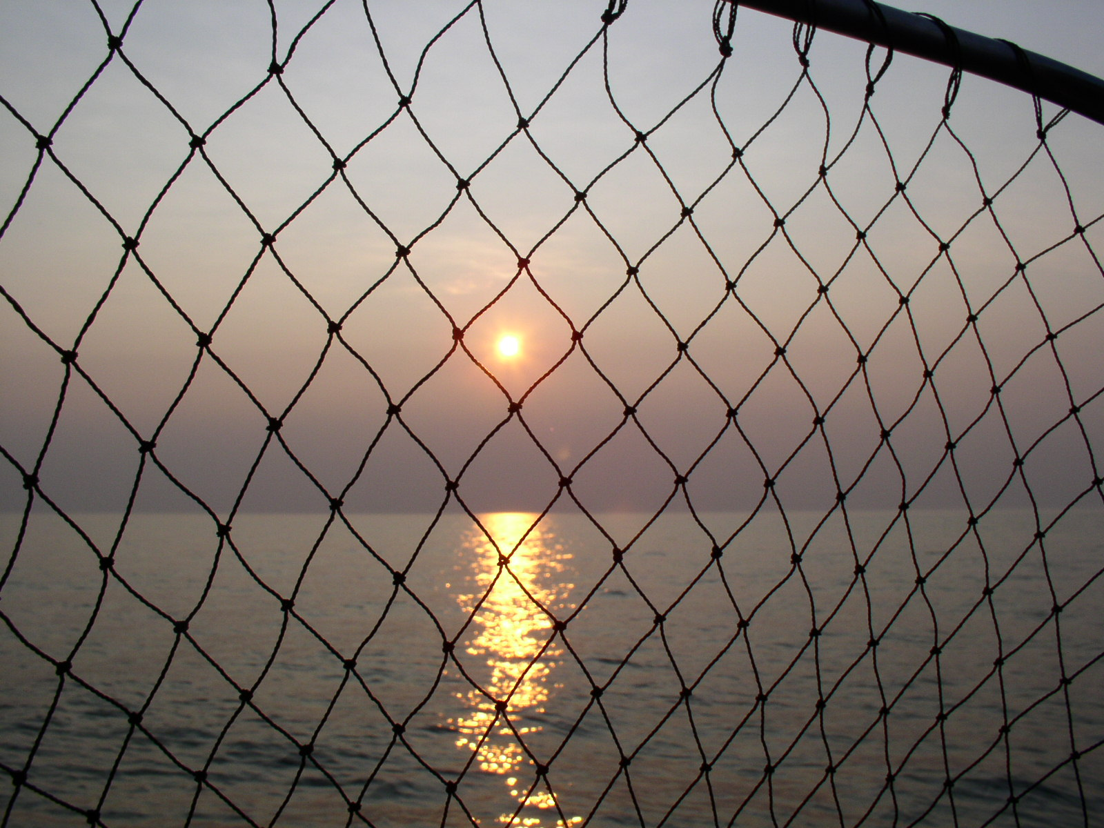File:Lake Erie Sunset with fish net.JPG - Wikipedia, the free ...