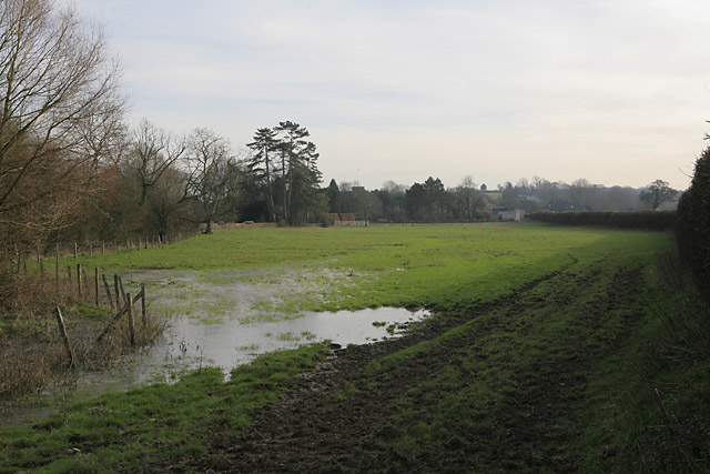 Looking across water meadows to Cheriton from Wayfarer's Walk - geograph.org.uk - 329493