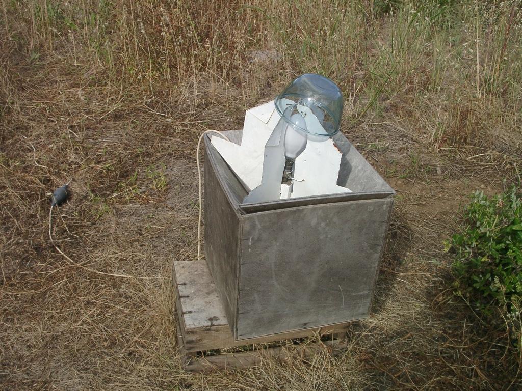 The fog trap for moths hog wendy99 maraya21