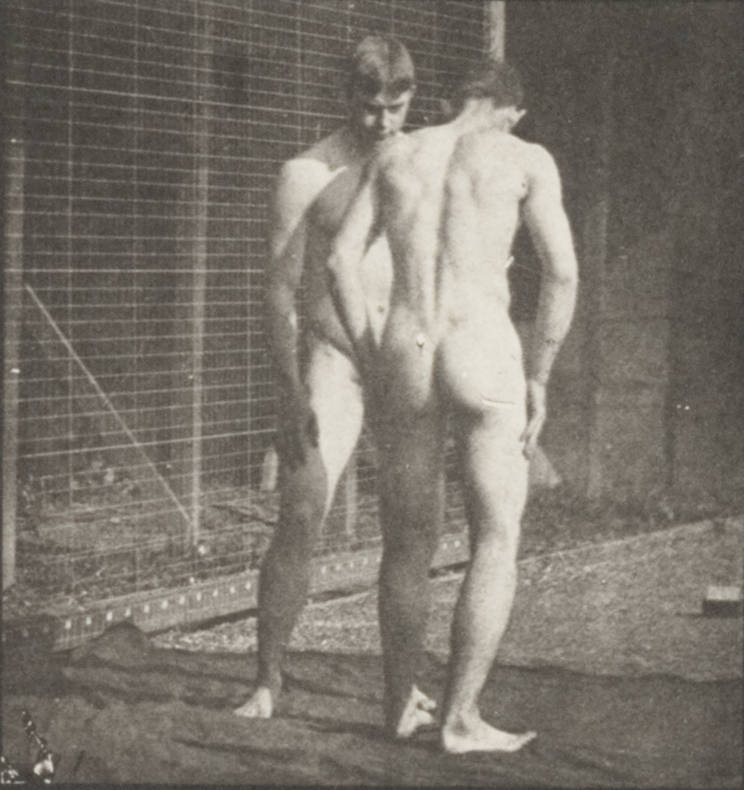 Nude Sportstars