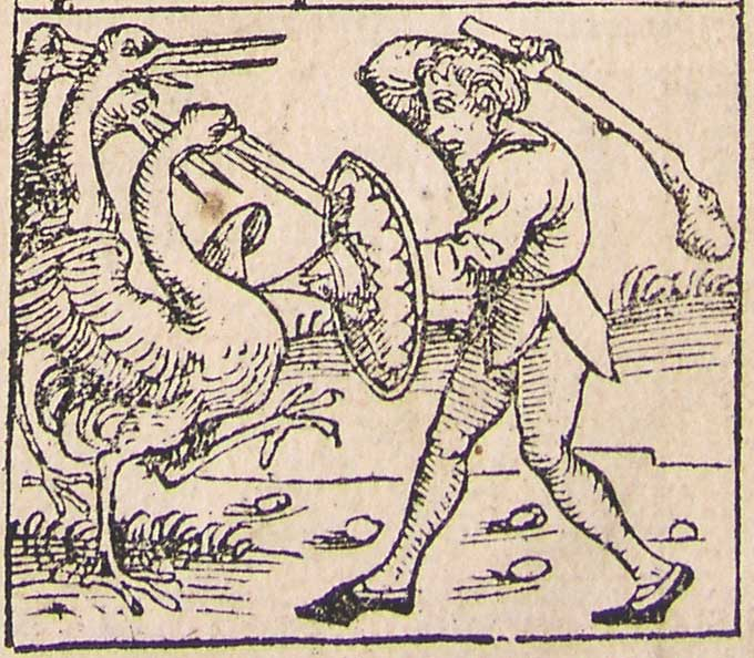 Nuremberg_chronicles_-_Strange_People_-_Pygmy_%28XIIr%29.jpg