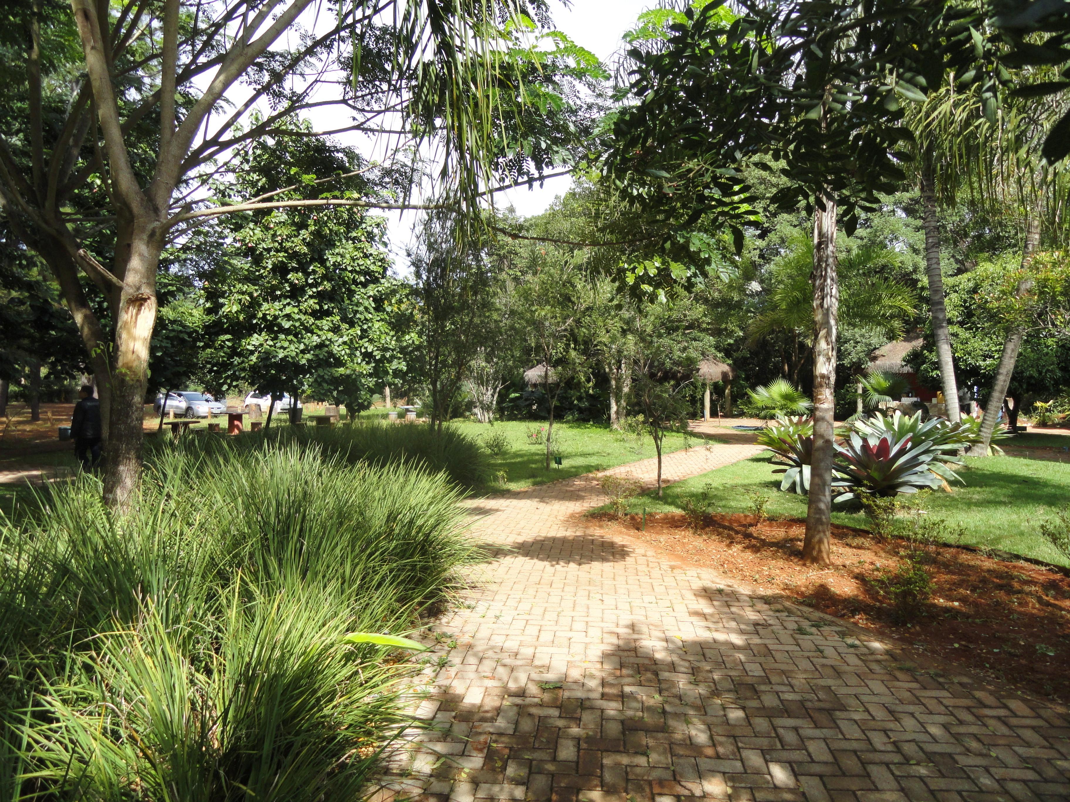 FilePatio  Jardim Botânico de Brasília  DSC09692JPG  Wikimedia