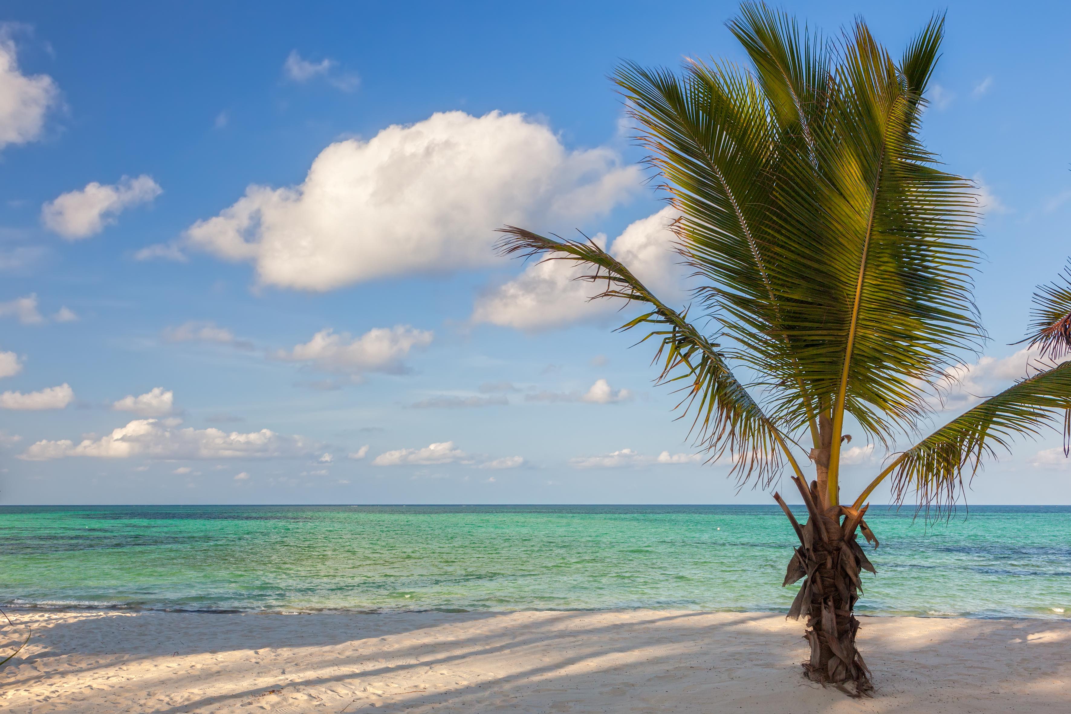 Image result for Zanzibar
