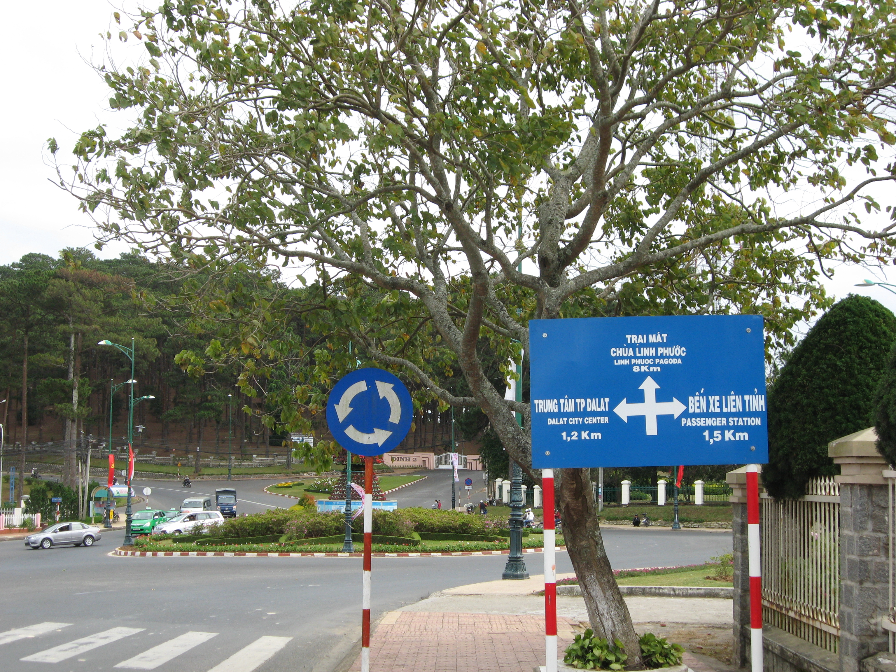 File Road Sign Tran Hung Dao Ho Tung Mau 3 Thang 4 Street Da Lat Jpg Wikimedia Commons