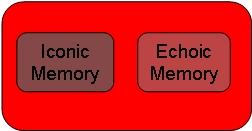AQA A Level Psychology Memory Revision | Learndojo.org |Sensory Memory Examples Psychology