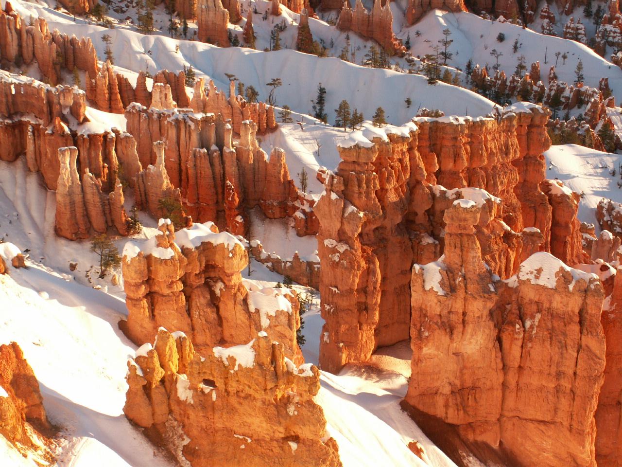Hoodoos Bryce Canyon National Park Us