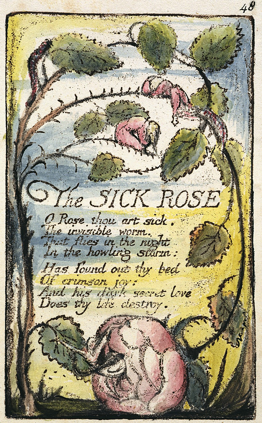 Essays on the sick rose by william blake