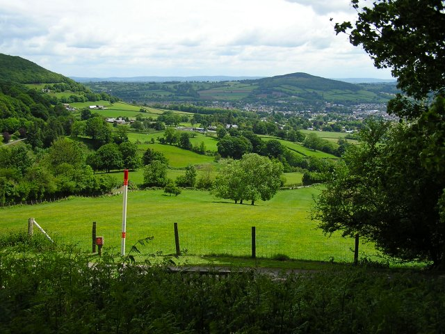 South East slope of Sugar Loaf - geograph.org.uk - 447525