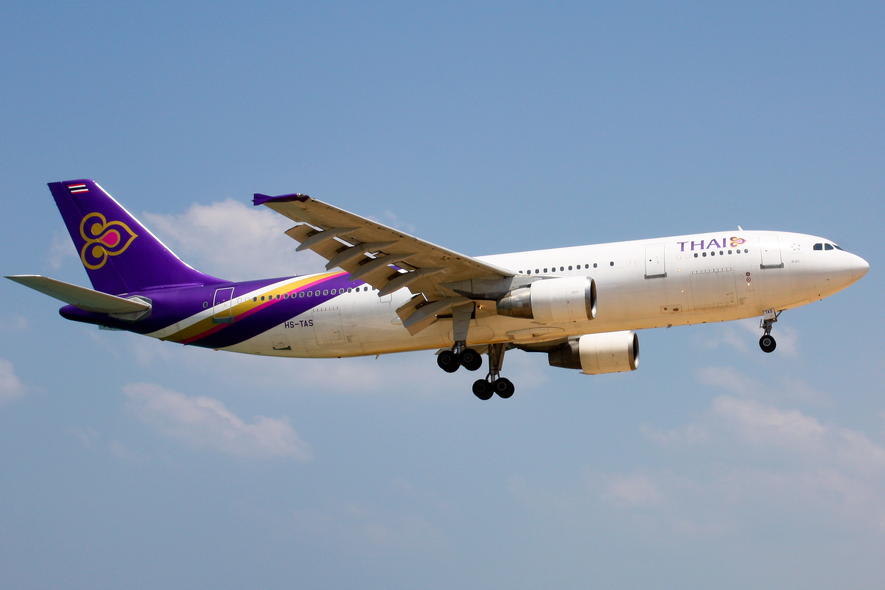 Download this Description Thai Airways Tas picture