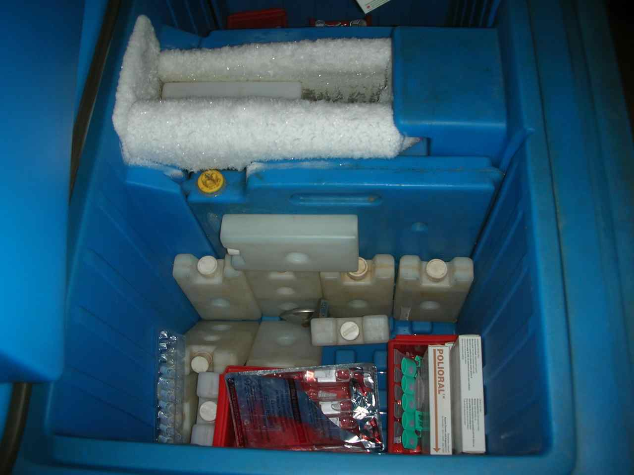 cold chain The cold chain market in the philippines is all set for steady growth as the sector has seen a surge in demand as domestic consumption increases consumer trends have shifted with a preference for frozen and chilled processed food over products from wet markets in addition, an increase in pharmaceutical sales also hikes up the demand.