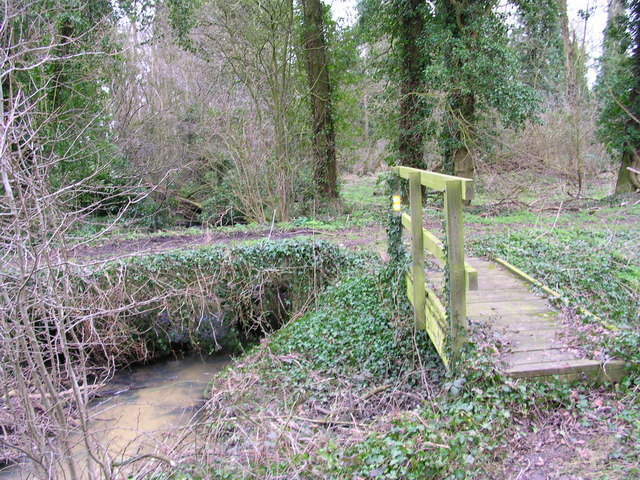 File:Wooded crosspaths - geograph.org.uk - 339815.jpg