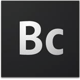 Adobe Business Catalyst Beta