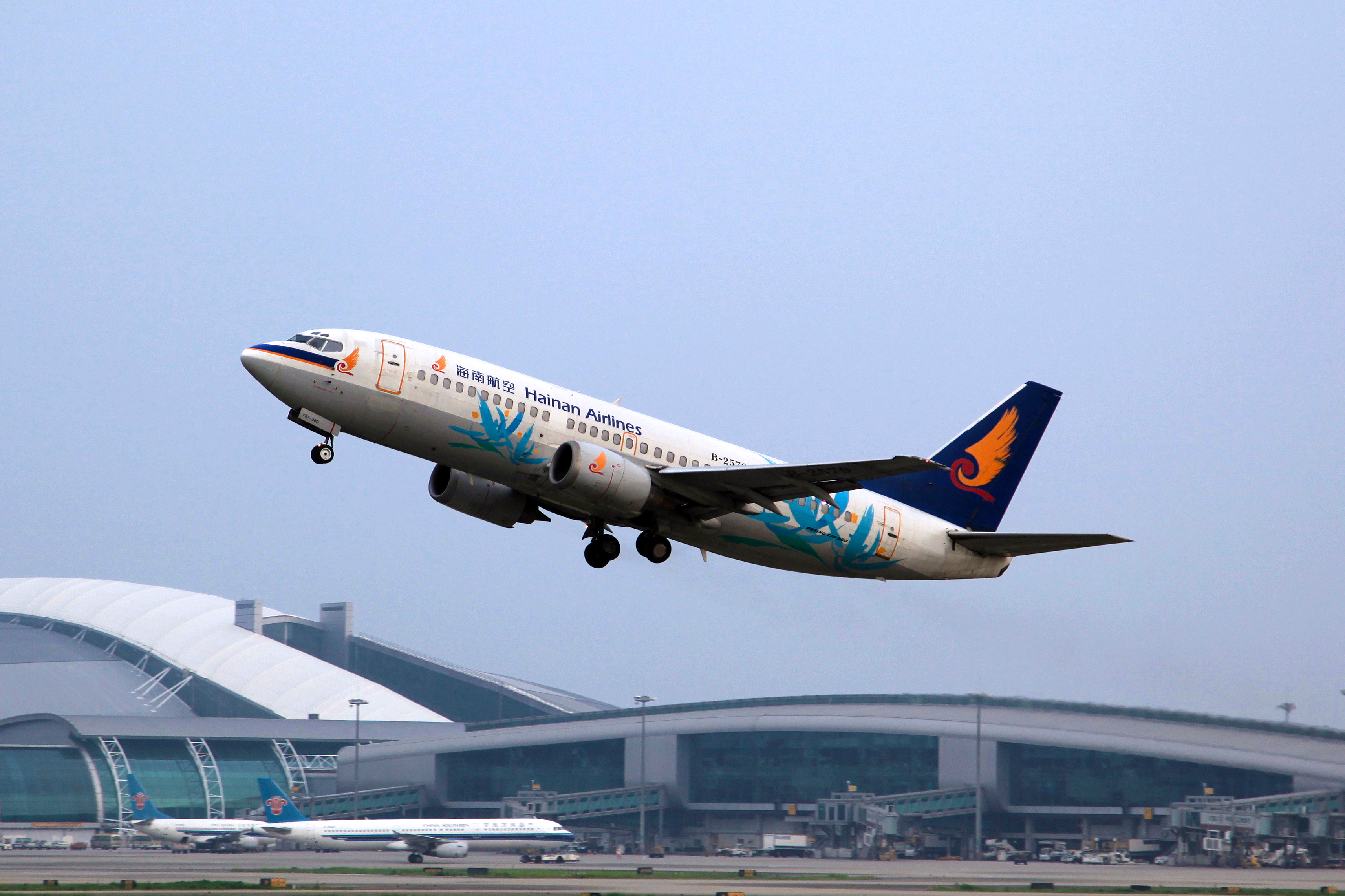 File:B-2579 - Hainan Airlines - Boeing 737-33A - Blue Flowers