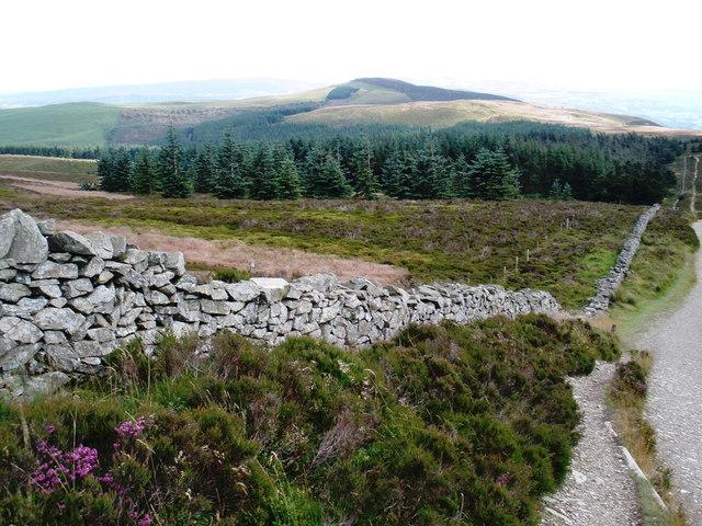 Boundary wall, south of Moel Famau - geograph.org.uk - 1410171.jpg