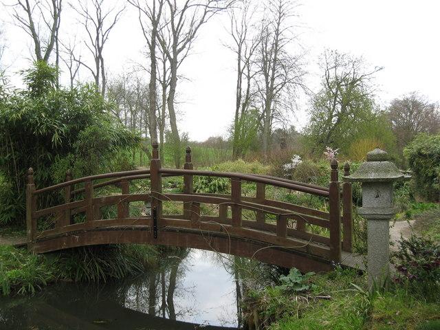 File:Bridge, Japanese garden, Gatton Park Reigate - geograph.org.uk - 1242832.jpg