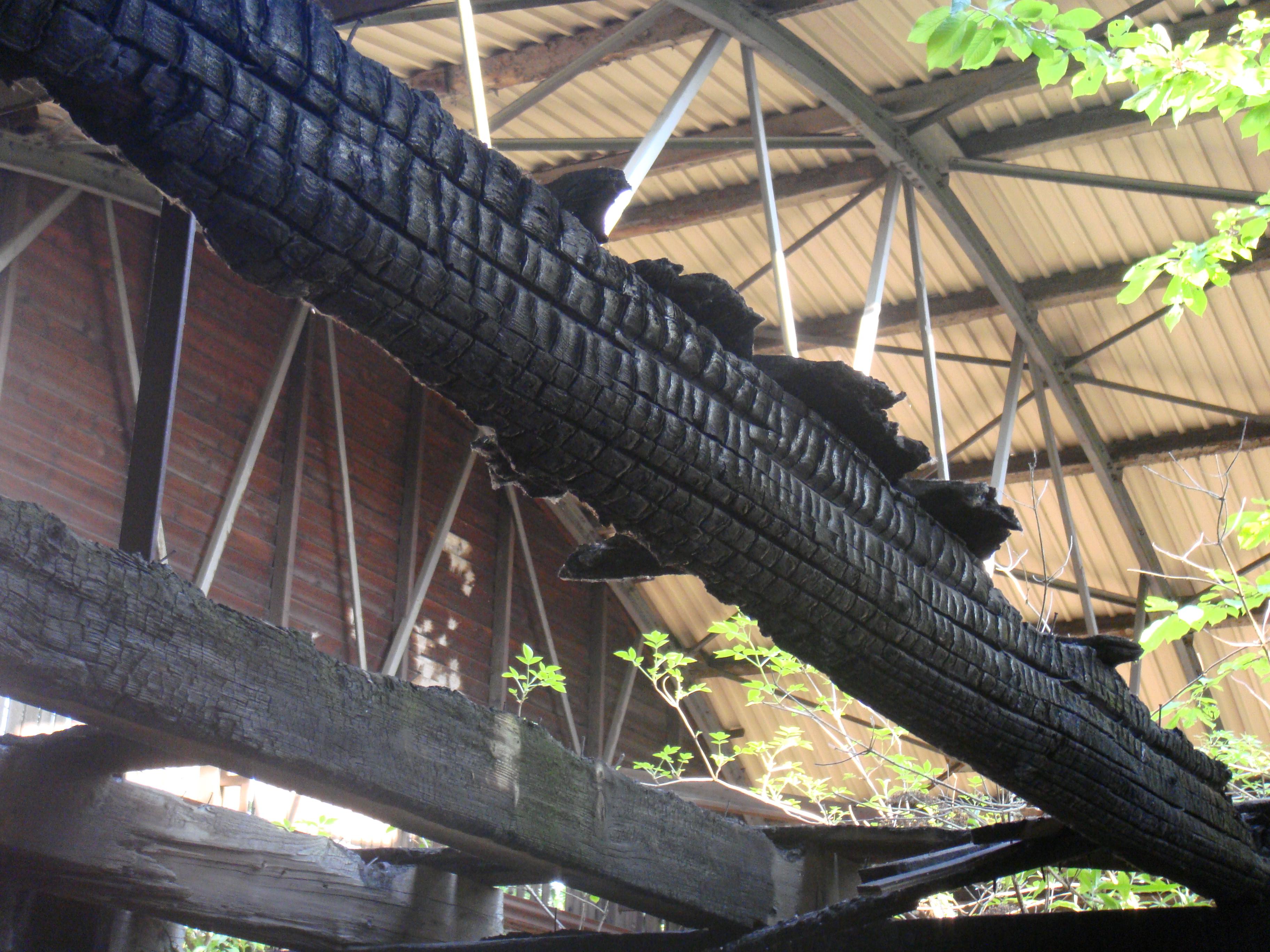 Holzbalken ~ Die neuesten Innenarchitekturideen