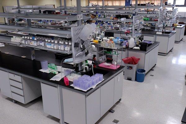 Laboratory - Wikipedia