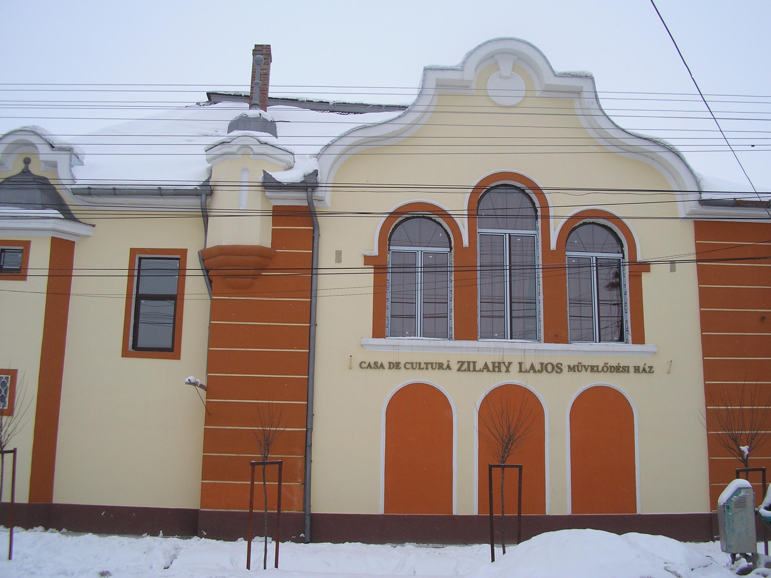 Fişier:Casa de cultura Salonta.JPG