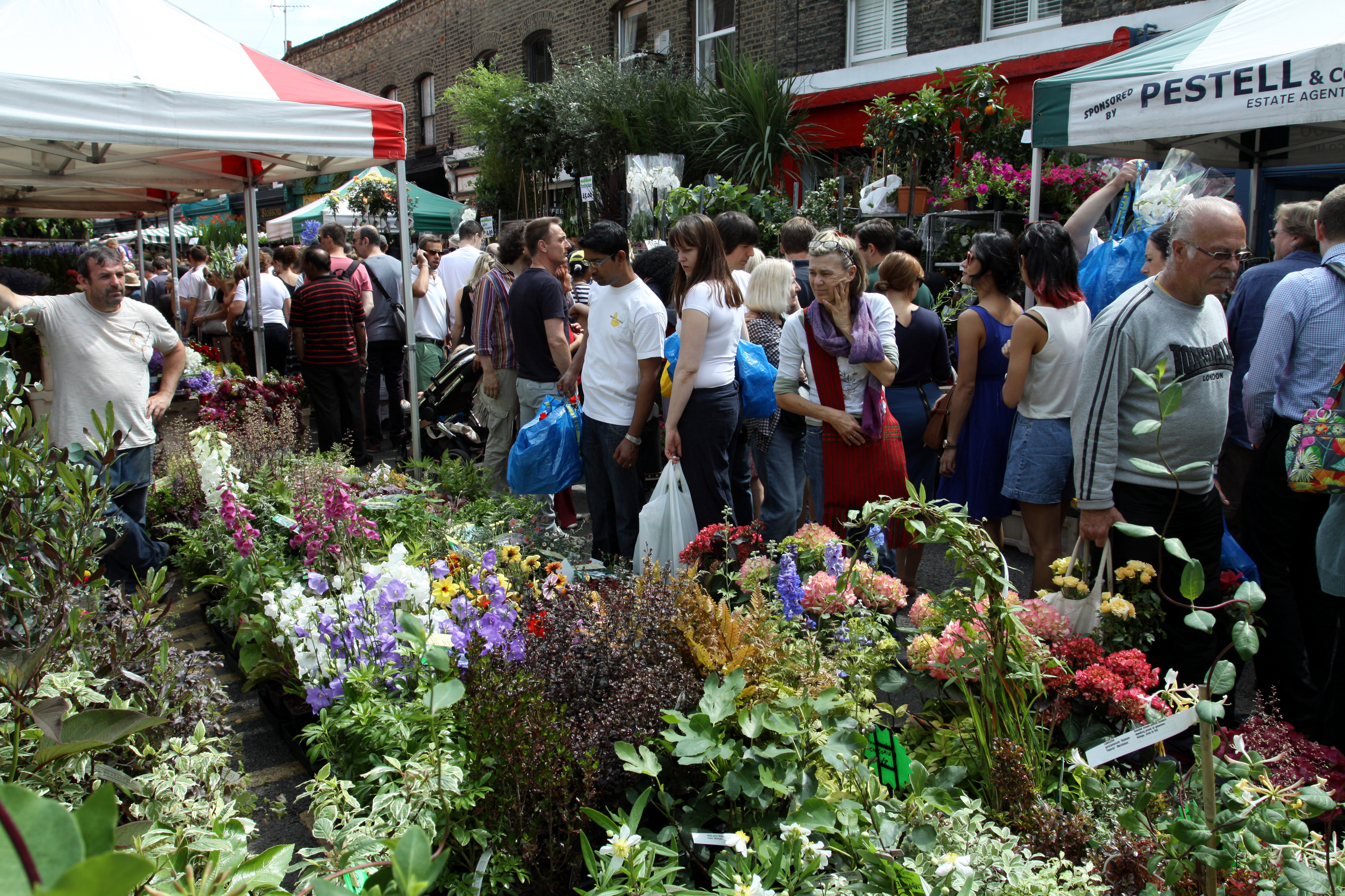 Flower market in Columbia Road