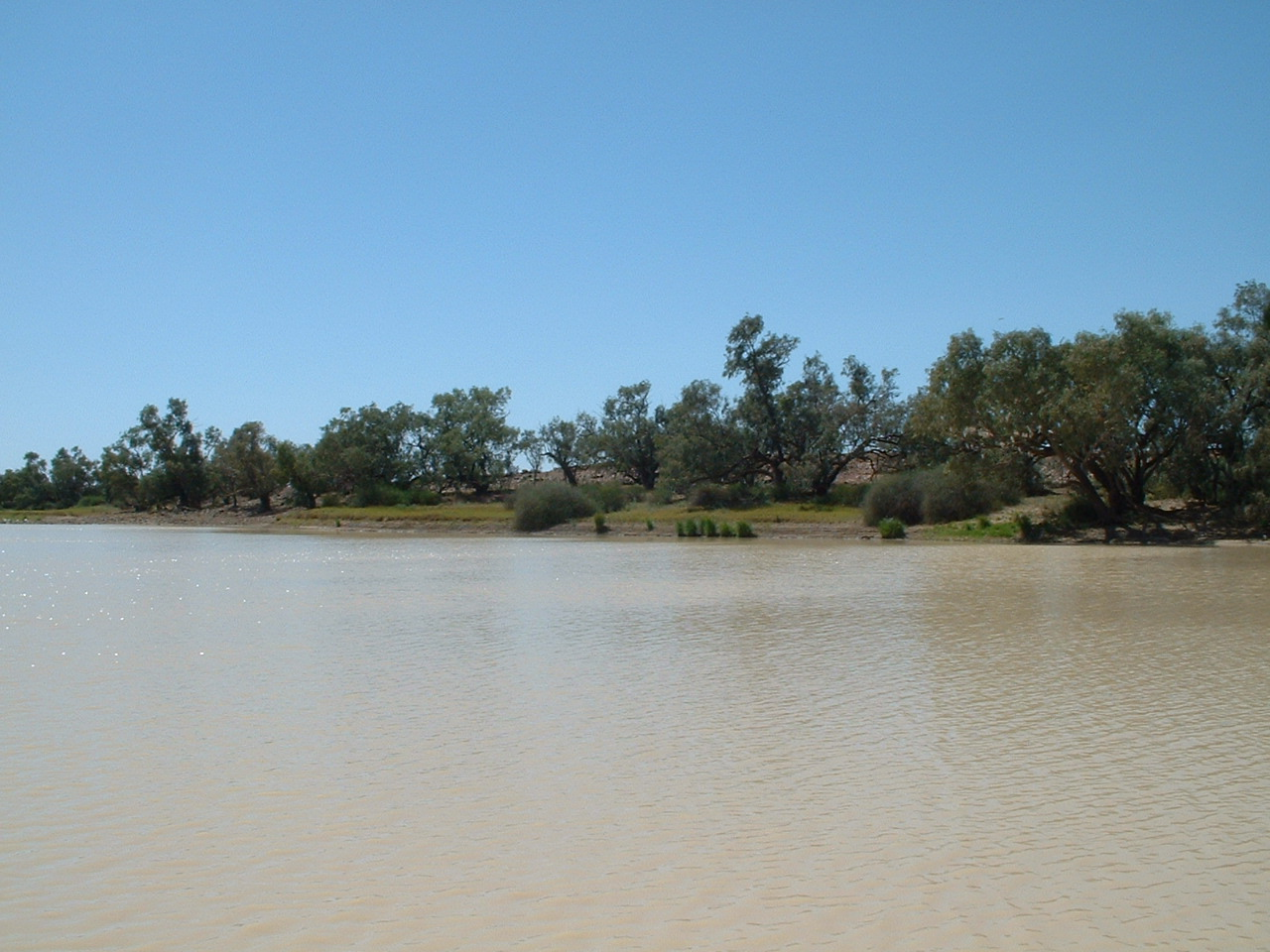 Coopers Creek Weather Forecast