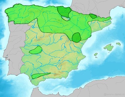 https://upload.wikimedia.org/wikipedia/commons/8/8a/Espagnacarlista.jpg