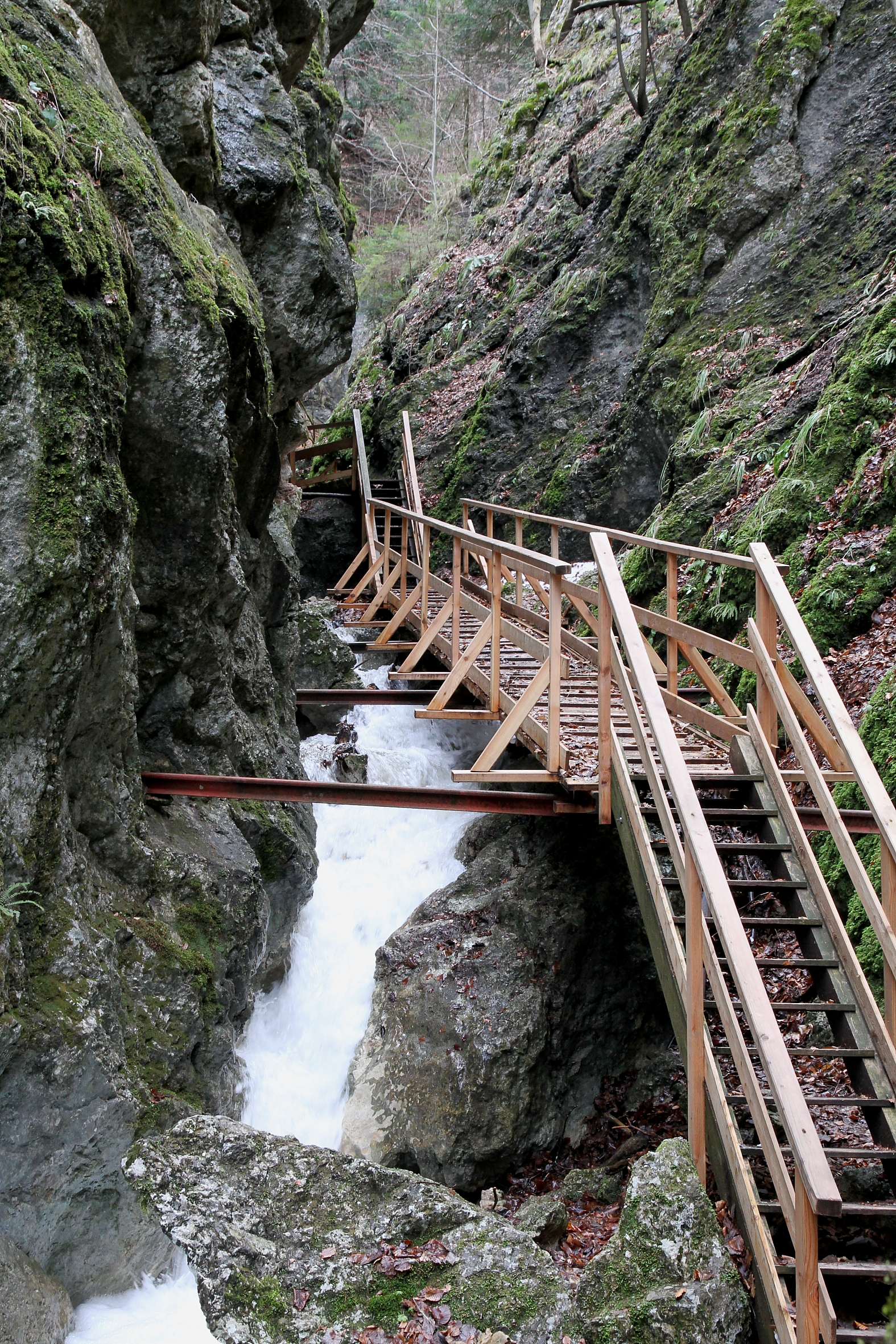 Filefurth Adt Steinwandklamm Mittelbereich3jpg Wikimedia Commons