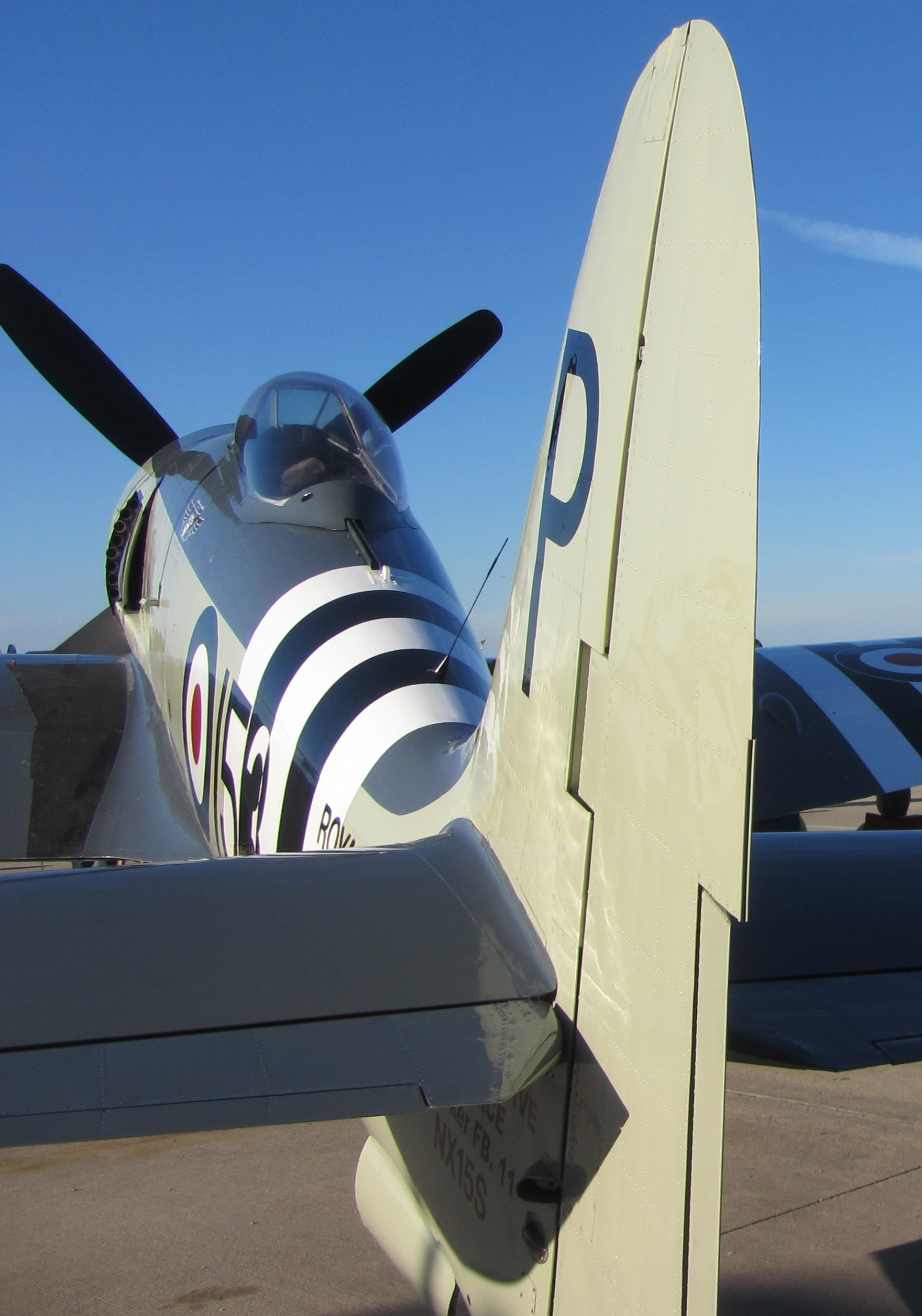 sea fury from behind