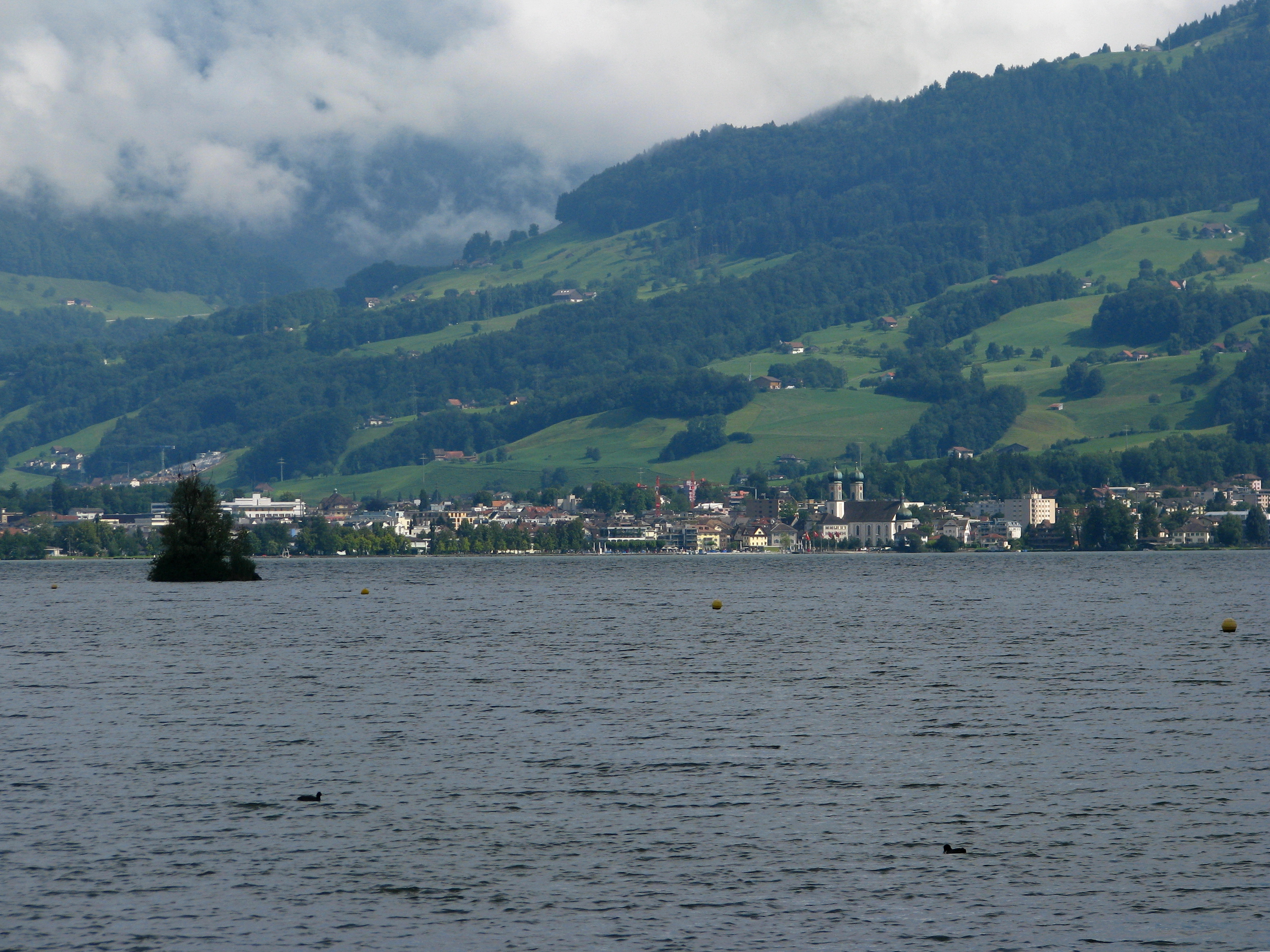 File:Lachen - Obersee - Rapperswil IMG 3839.jpg - Wikipedia, the free ... Rapper