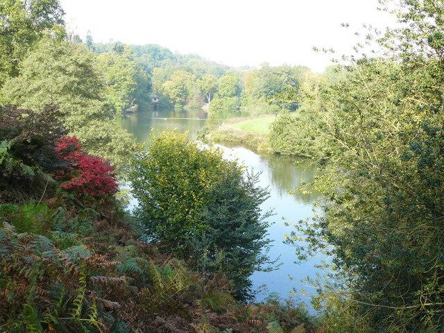 Lake at Winkworth Arboretum - geograph.org.uk - 1165818