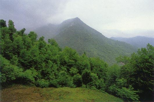 Landschaft in Mazandaran