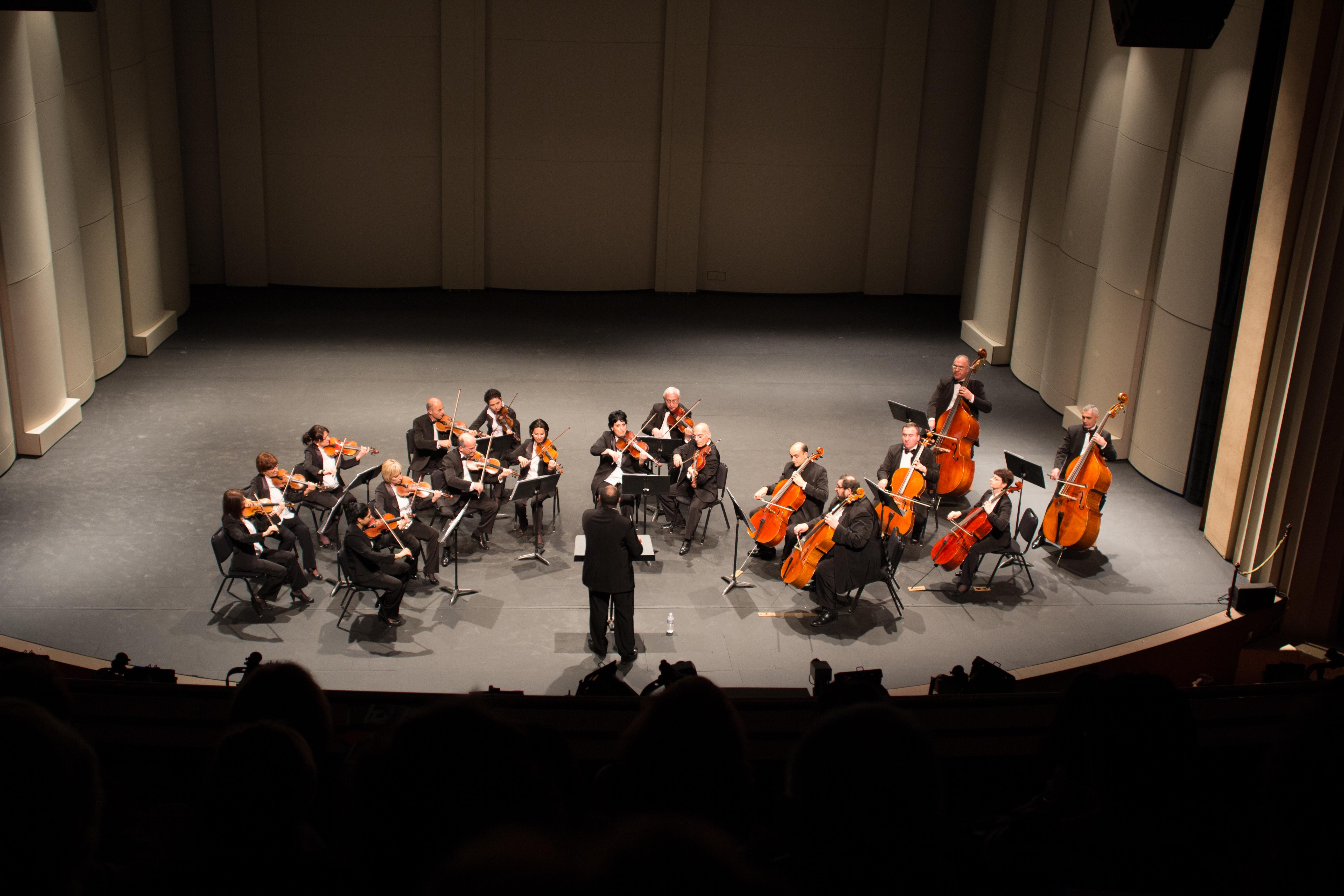 можете картинки камерного оркестра значок