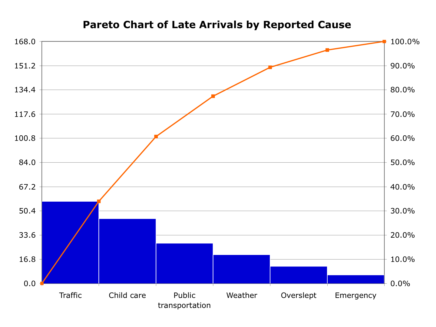What does a pareto chart look like